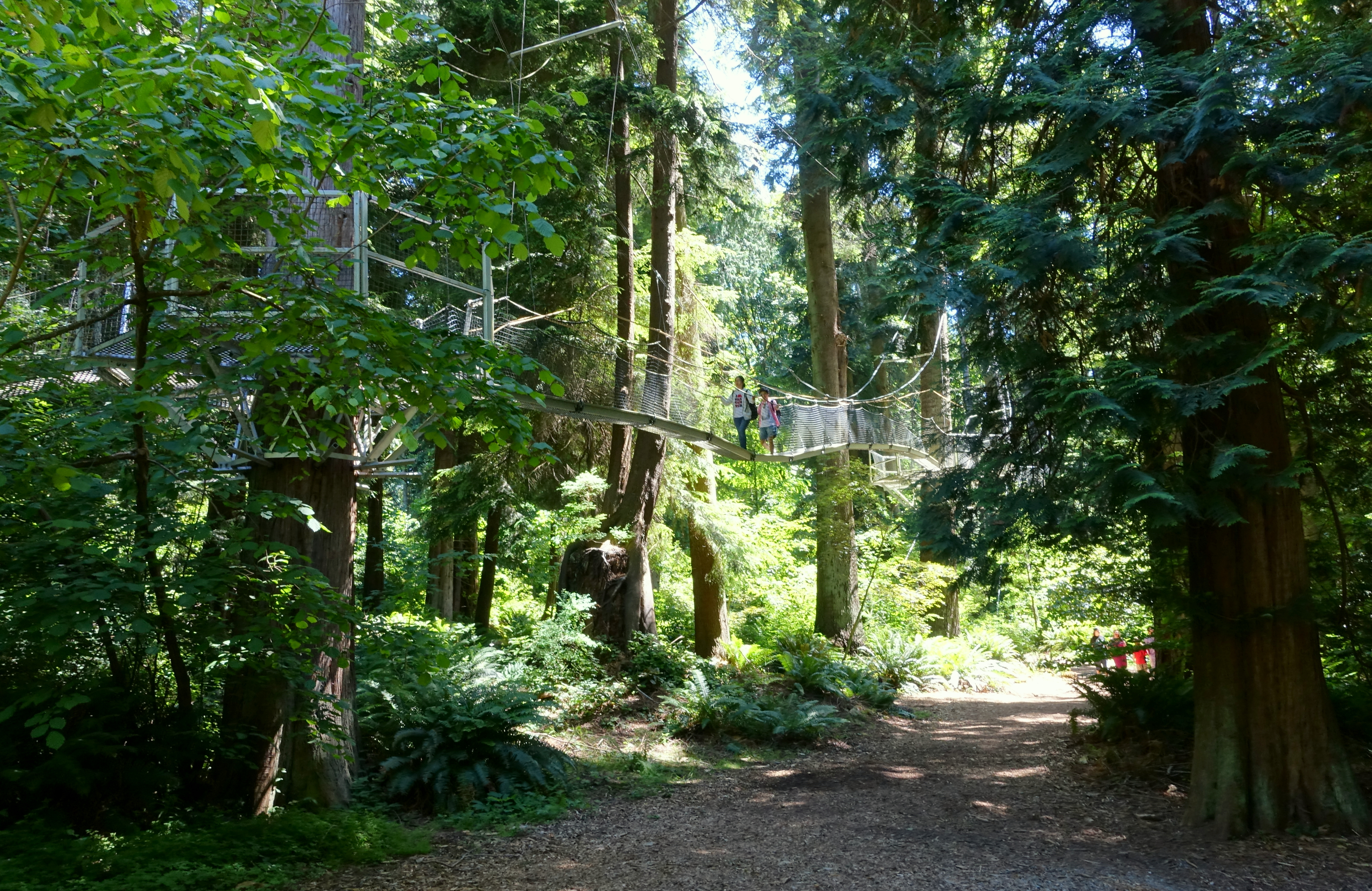 Greenheart TreeWalk