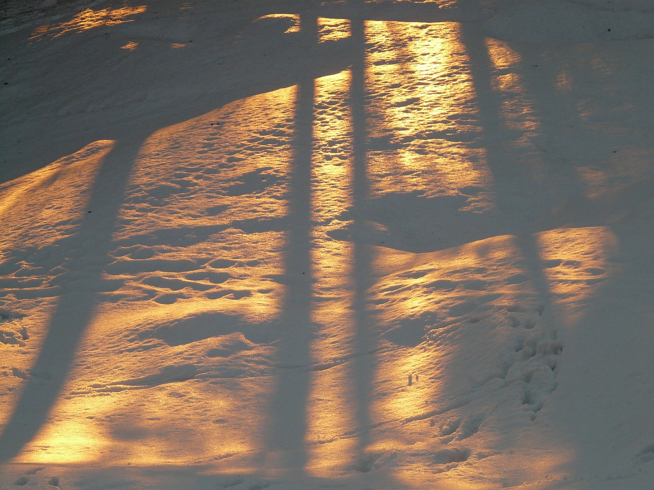 sunlight reflected on snow