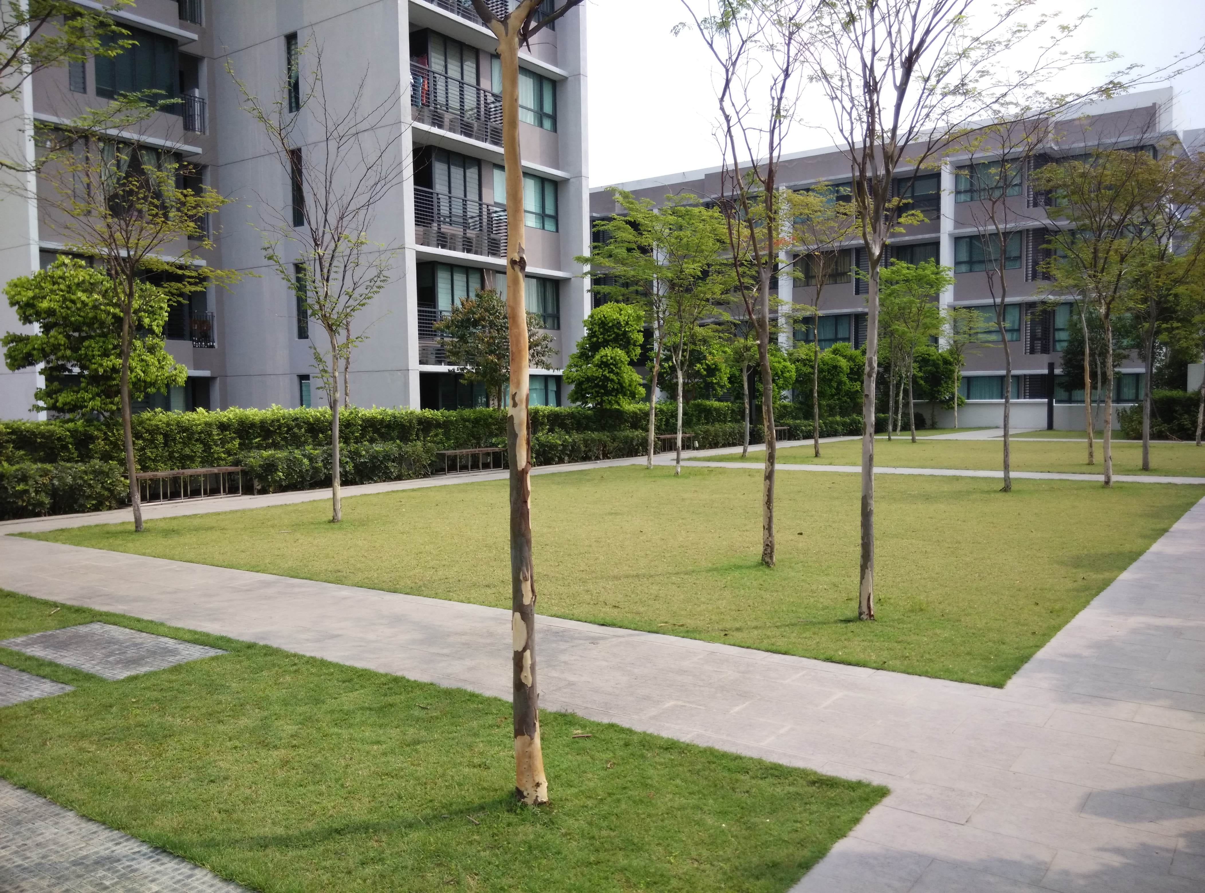 green spaces at office complex