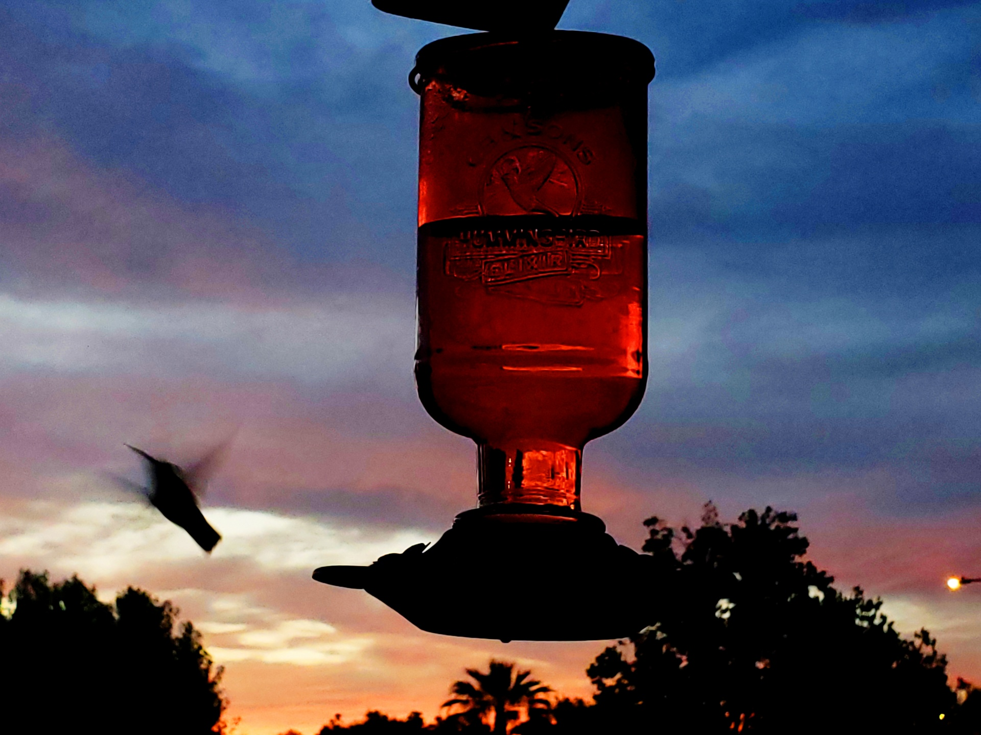 hummer at sunset