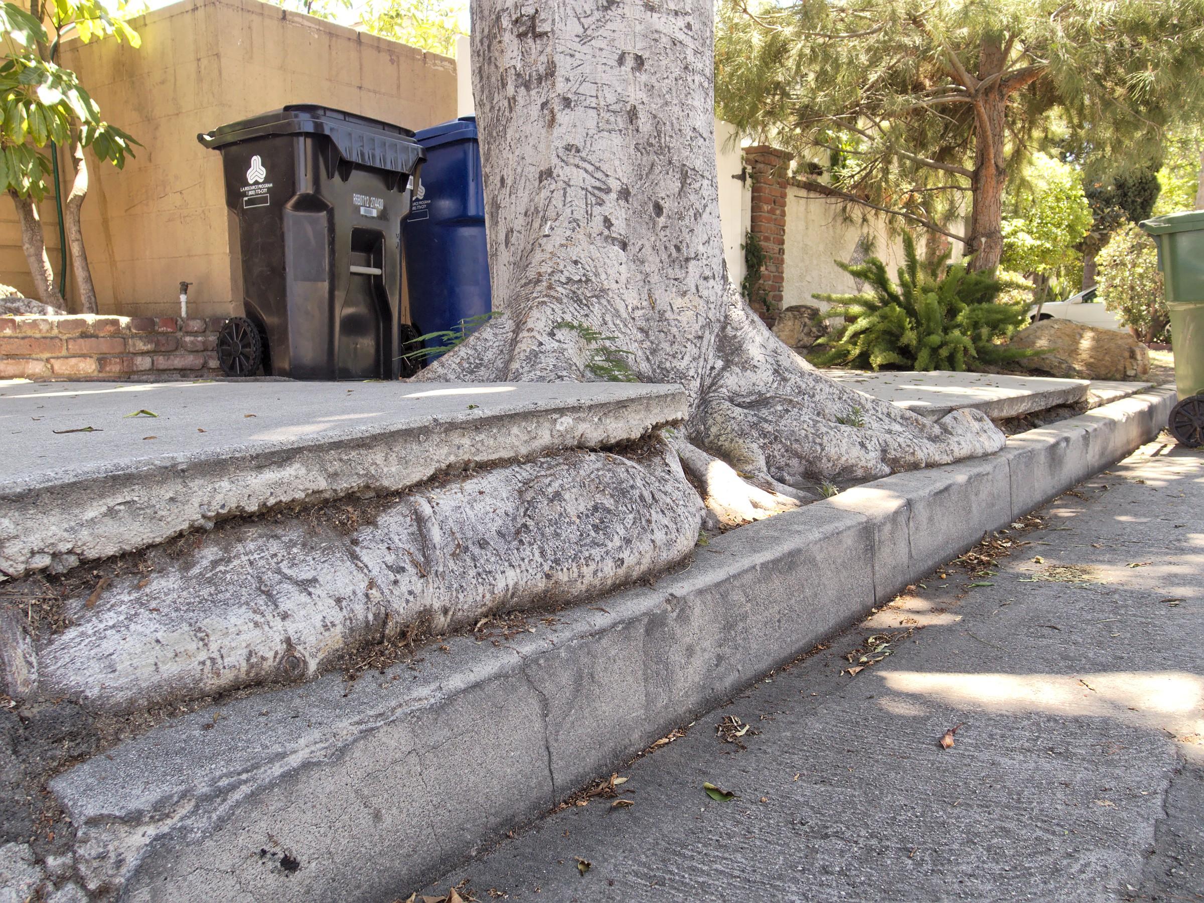 lifted sidewalk