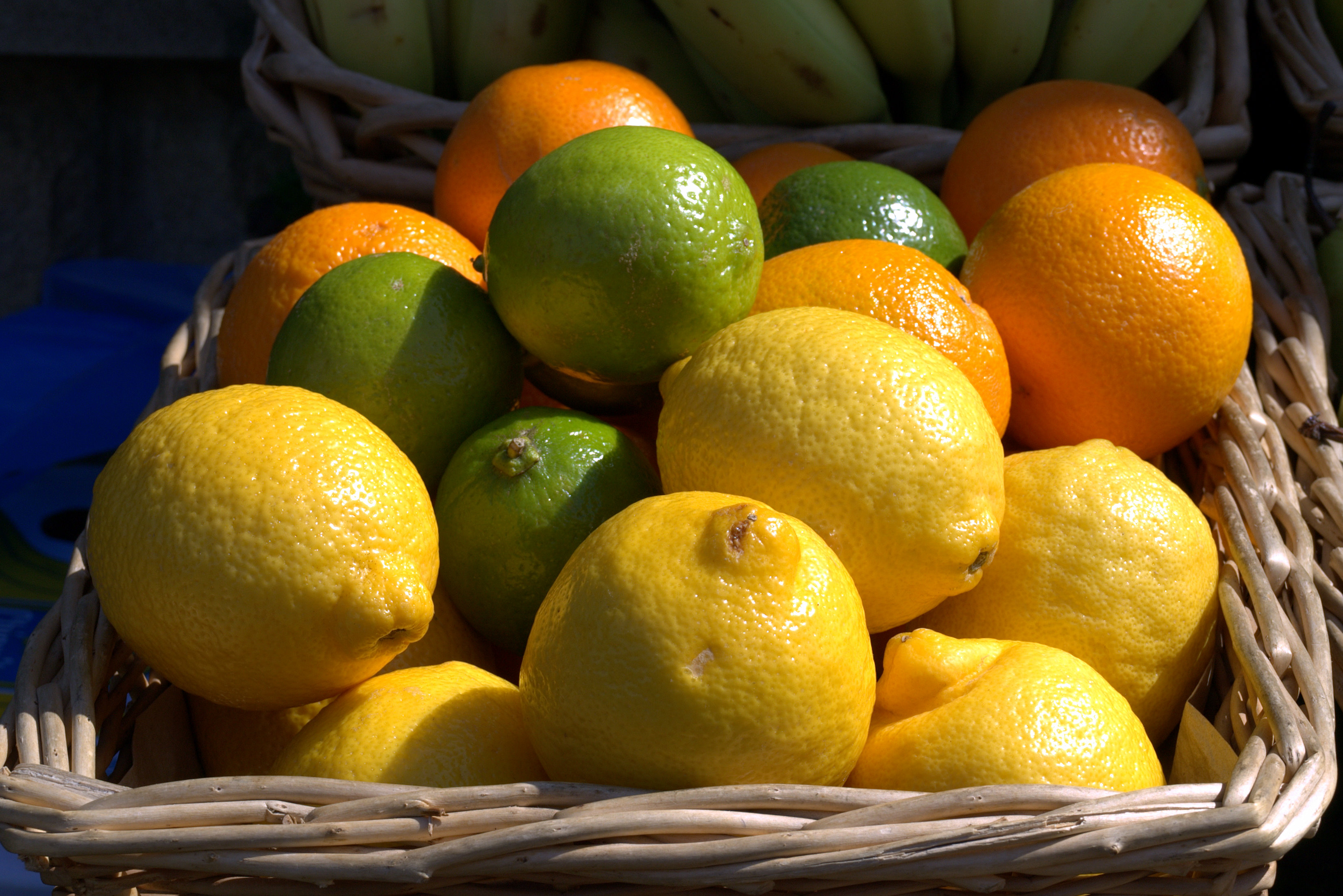 Continue the tradition with a citrus tree and reap the rewards for years to come.