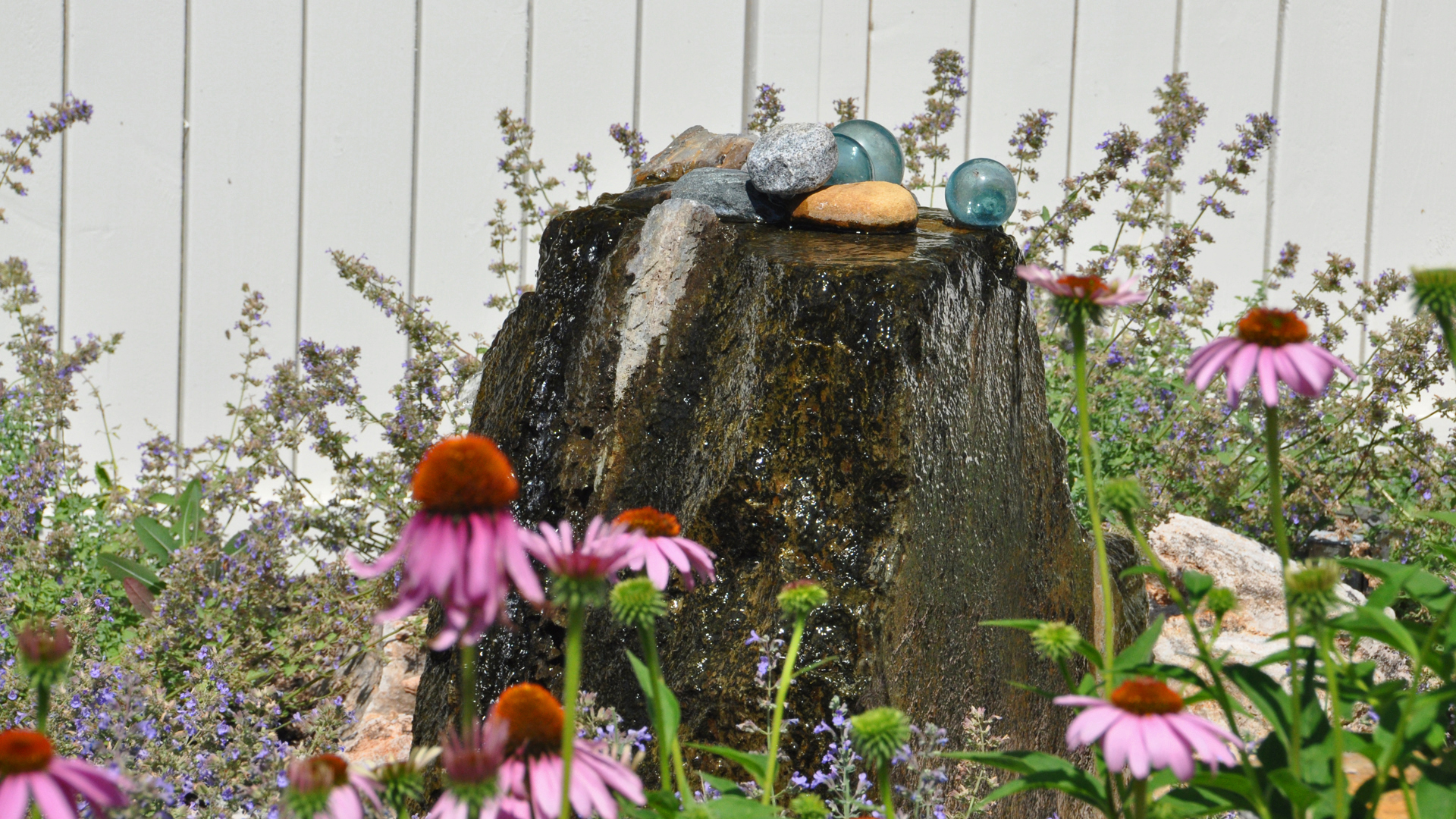 Catmint and coneflowers surround the stone water feature. The gentle sound of the bubbling boulder gives tranquility to the scene.
