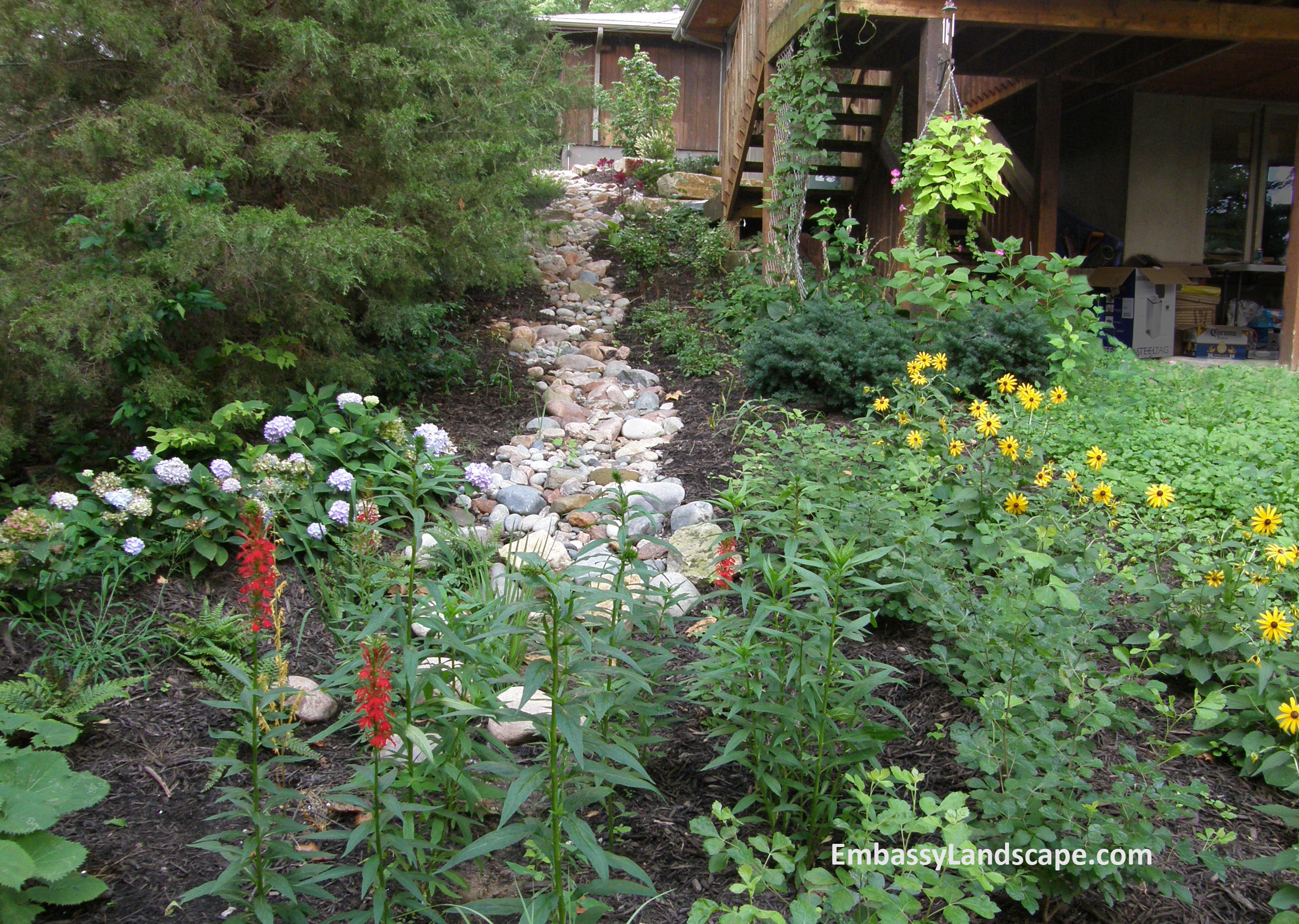 Native plants require fewer chemical applications, helping to protect our water system.
