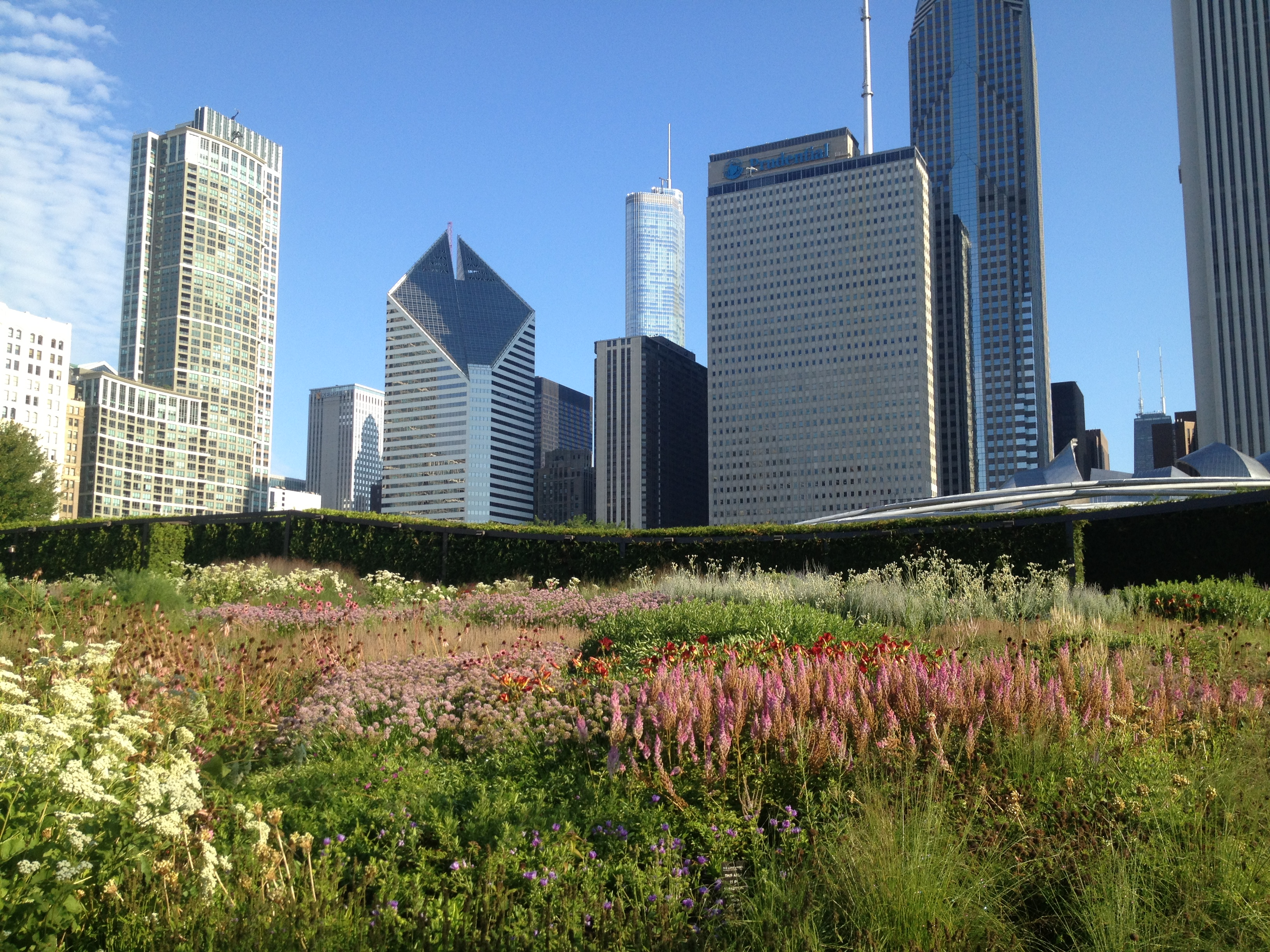 Introducing sustainable landscaping into urban areas results in healthier communities.