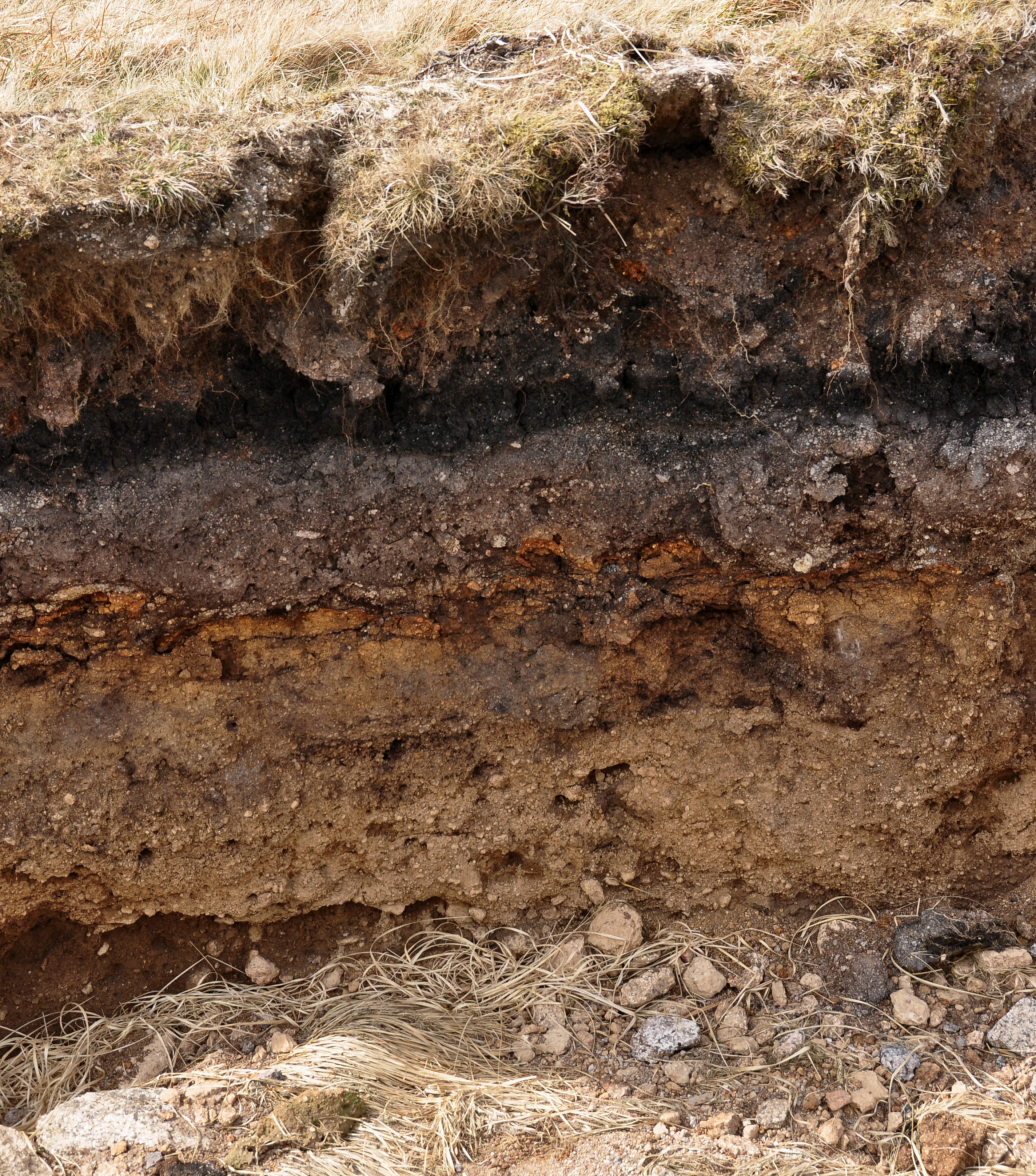 The layers of soil can give its biography.