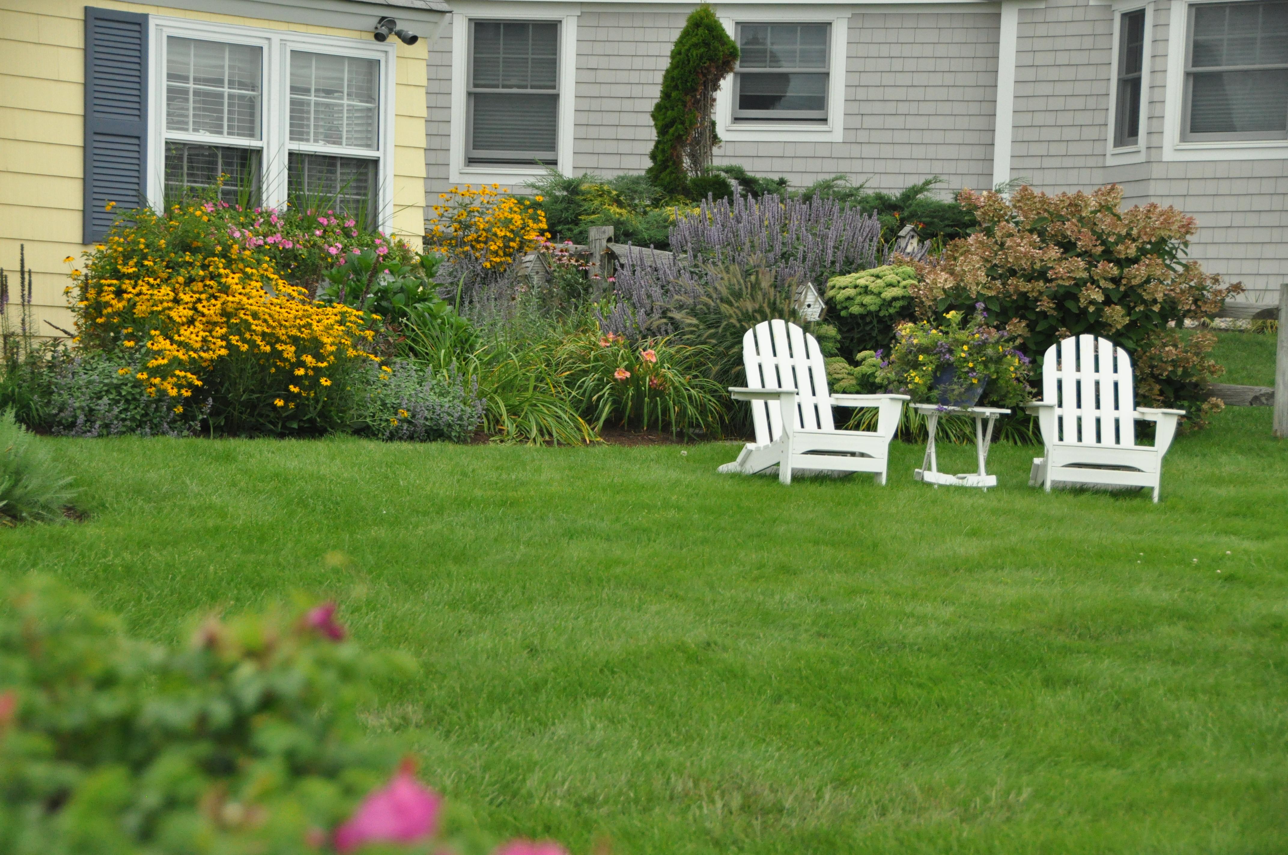Using environmentally friendly programs, you can still enjoy a lush lawn.