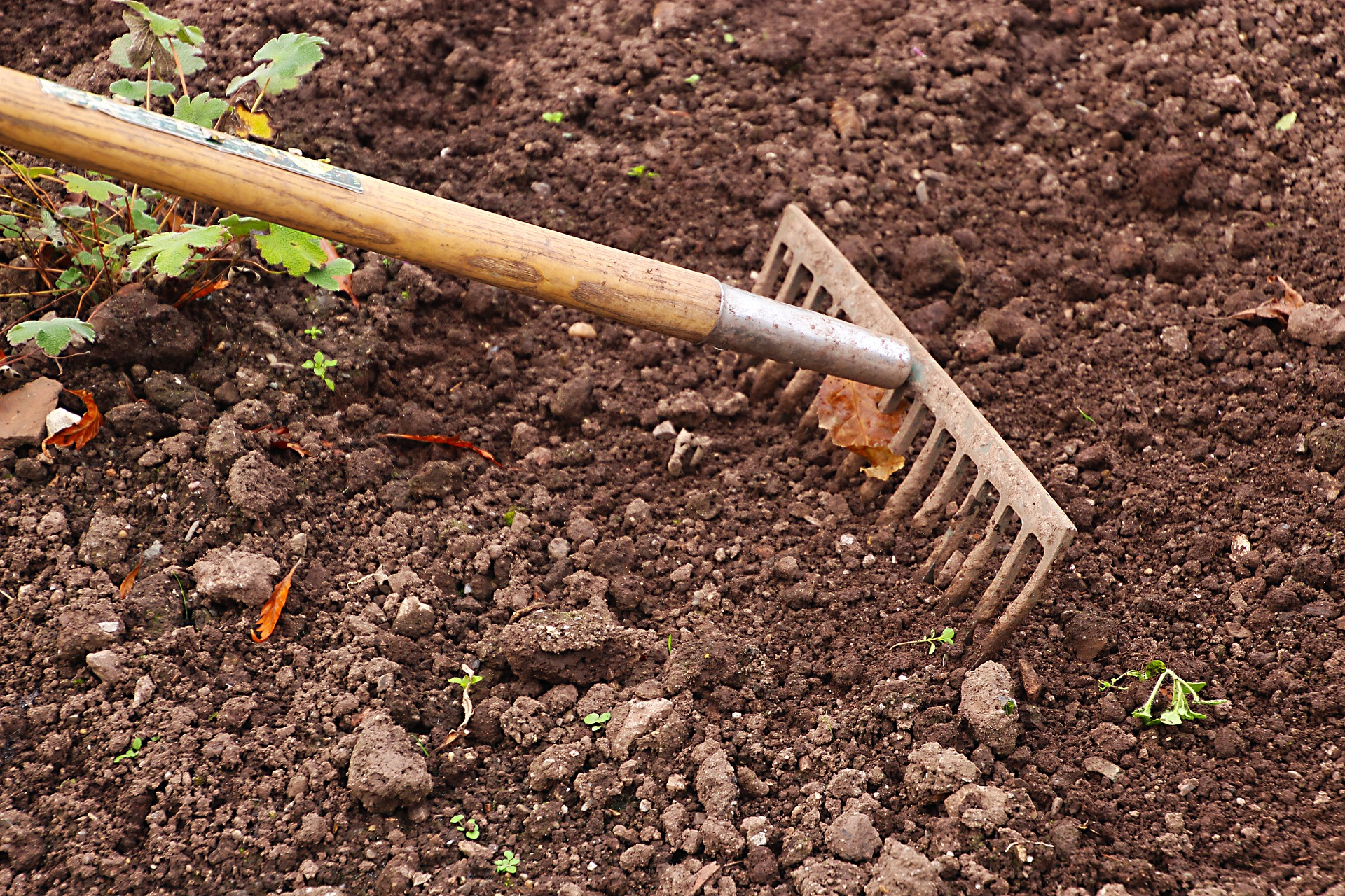 The appearance of soil can be deceptive.