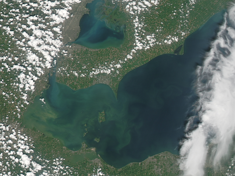 Arial photograph of an algae bloom in Lake Erie.