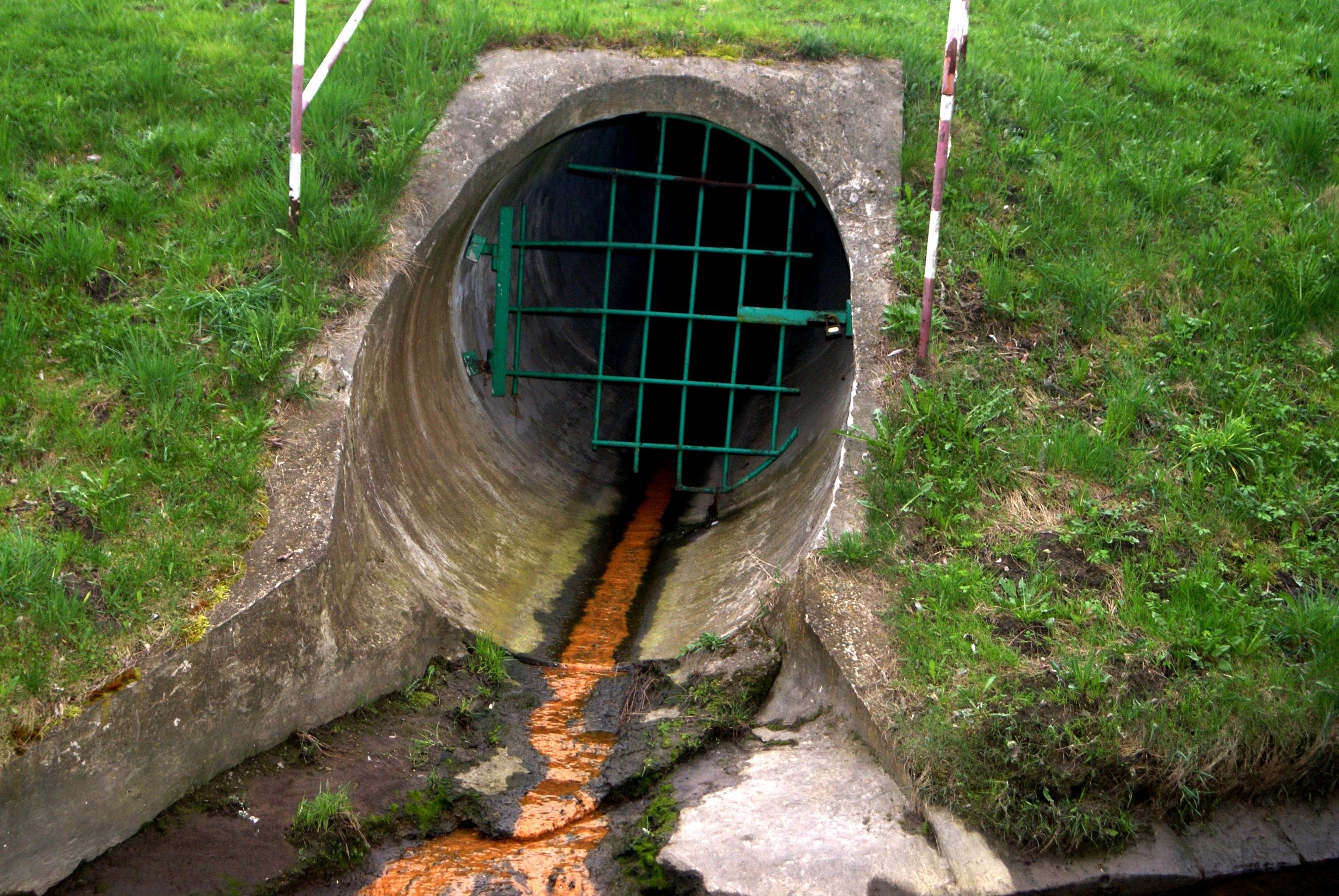 Fertilizers can contaminate run off.