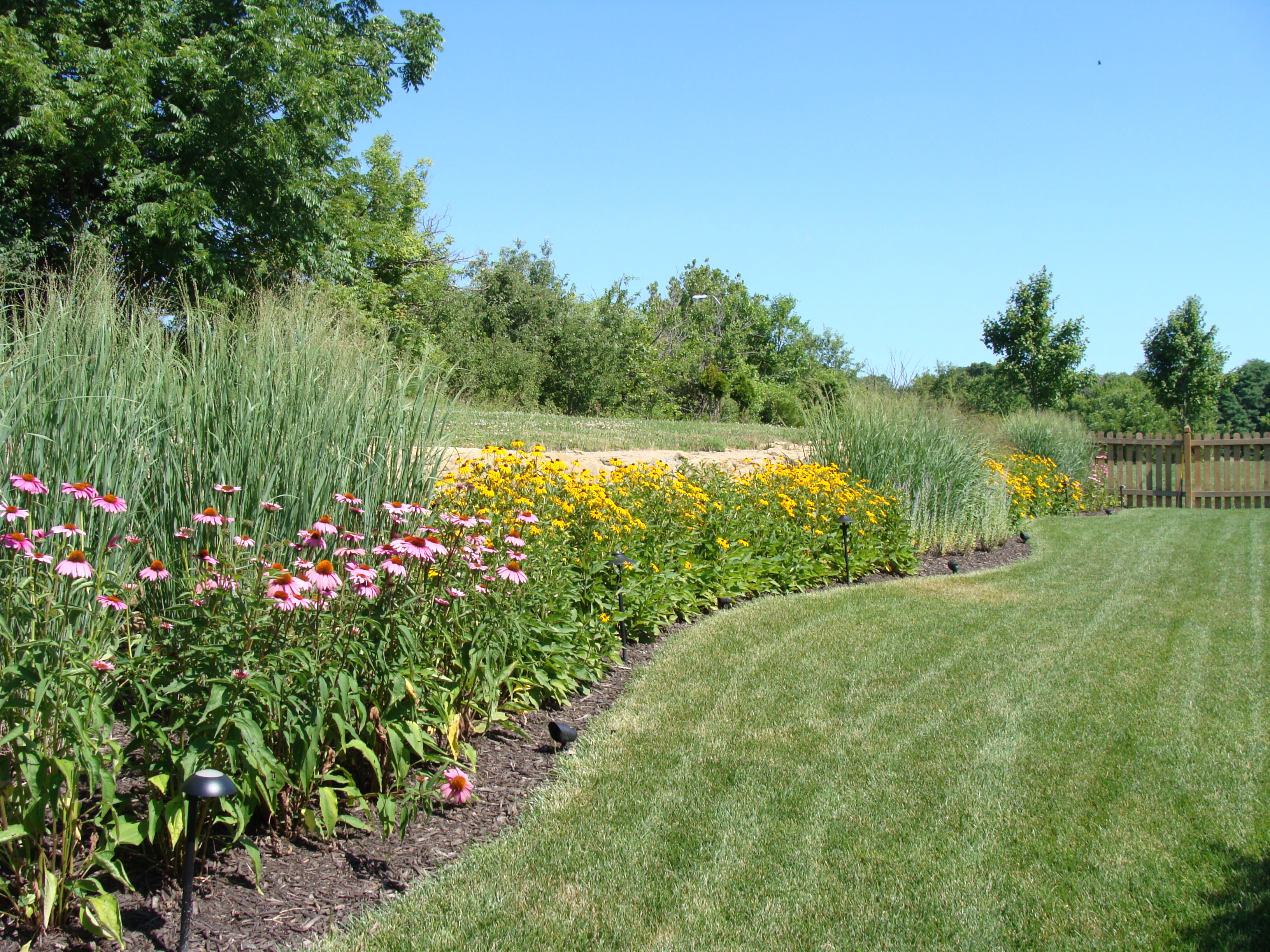 A sunny, open area with cover nearby is an ideal setting for a butterfly garden.