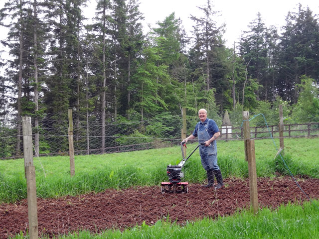 Healthy soil equals healthy plants.